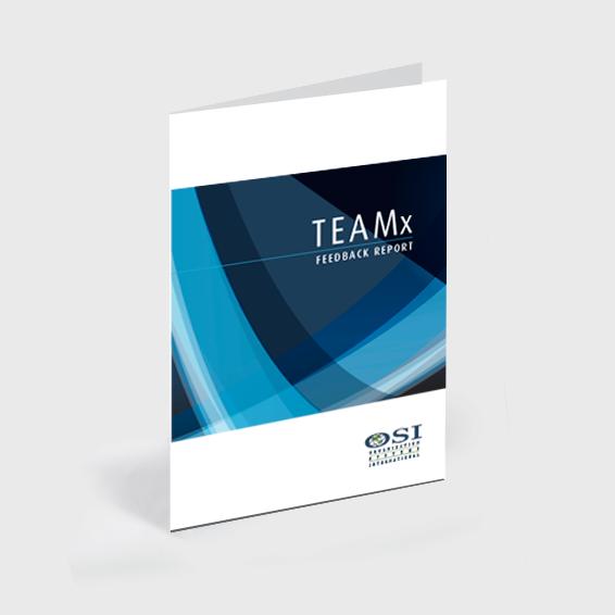 OSI-WEB-STORE-TEAMx